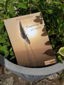 Coquecigrues par mégarde, un recueil de poésie de Jean-Louis Riguet