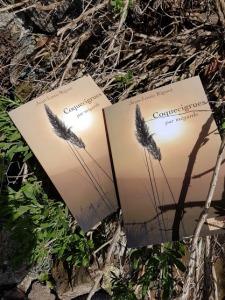 Un recueil de poésie de Jean-Louis Riguet Coquecigrues par mégarde